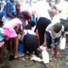 EDITO: Gabon : Disparition de la cagnotte pétrolière gabonaise : Silence ! Bongo Vole…