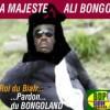 """Les biafreries d'Ali: Le Gabon classé """"non libre"""" dans le rapport 2012 de Freedom House"""