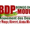 """Interview de Monsieur Aymar Ibondzy-Pandzou, Sec. Exécutif du BDP-MODWOAM, ce dimanche 29 janvier sur les ondes du """"Dr. Mouketou Reçoit"""""""