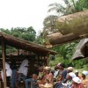 Démarrage effectif de la campagne de vaccination contre la Rougeole à Libreville et Owendo