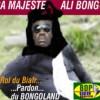 Gabon : Les Biafreries d'Ali : Le Bongo se donne 10 sur 20. Le FMI dit : « Momoh ! Tu as zéro sur 20 » (Dr. Daniel Mengara)