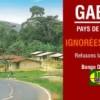 Le Gabon perd la présidence de la Banque d'Afrique centrale