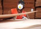 Gabon : les forestiers planchent sur la transformation